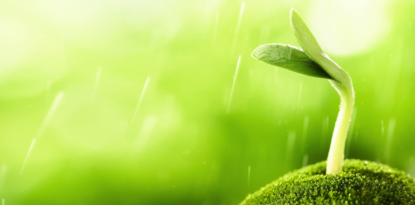 Home Slideshow Header 1